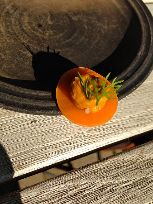 indewulf06-gefermenteerde-wortel