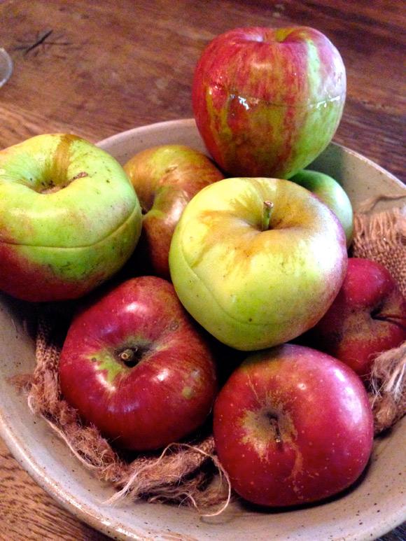 indewulf35-appeltjes