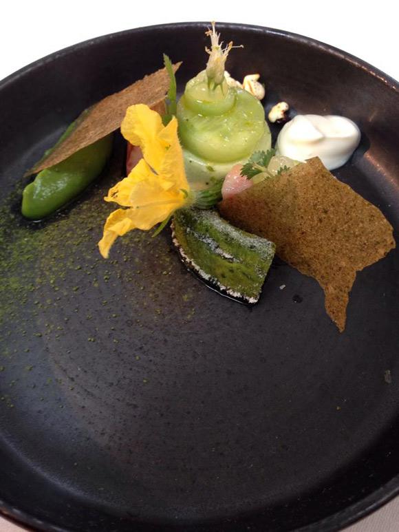 the-jane-avocado