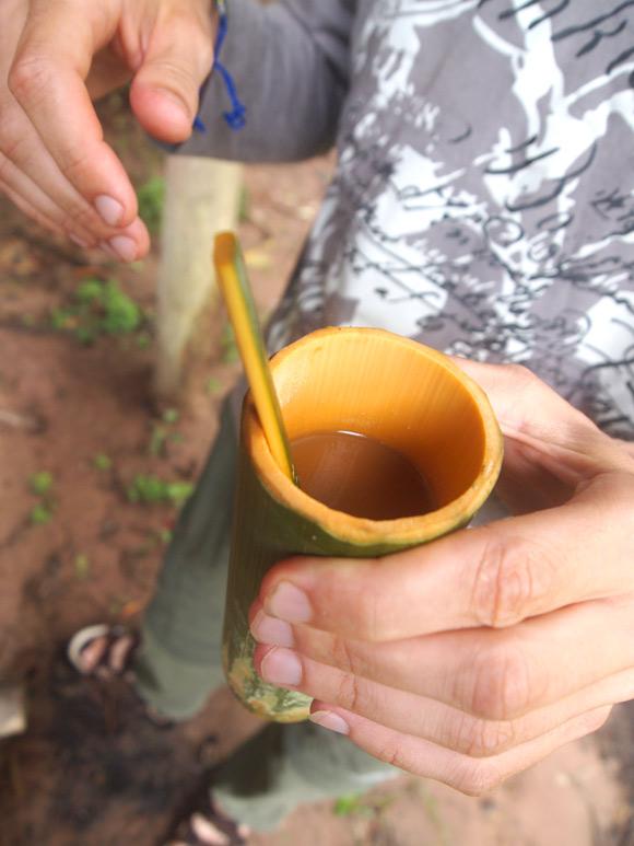 junglekoffie