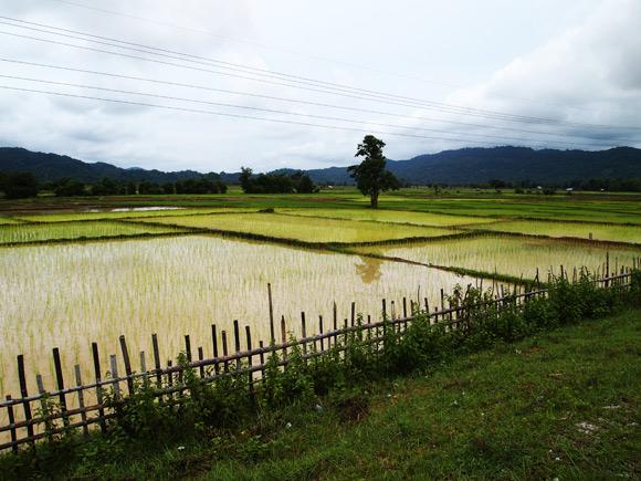 thakek-landschap