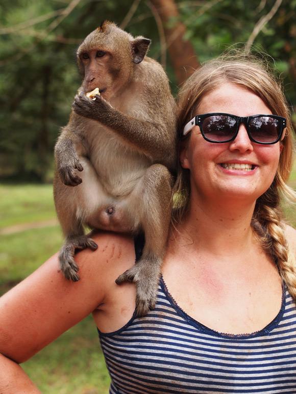 ankor-caro-monkey