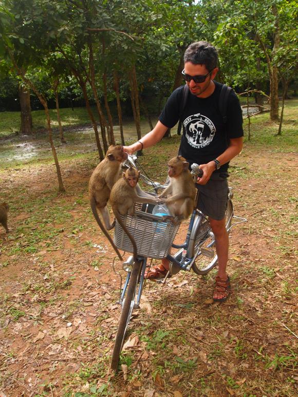 ankor-fre-fiets-aap