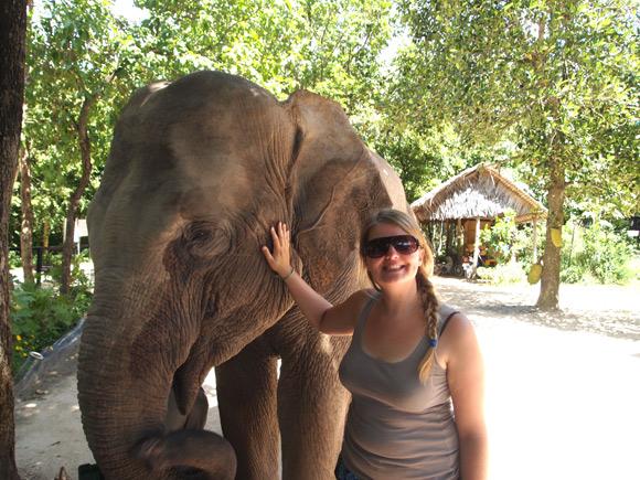 caro-olifant