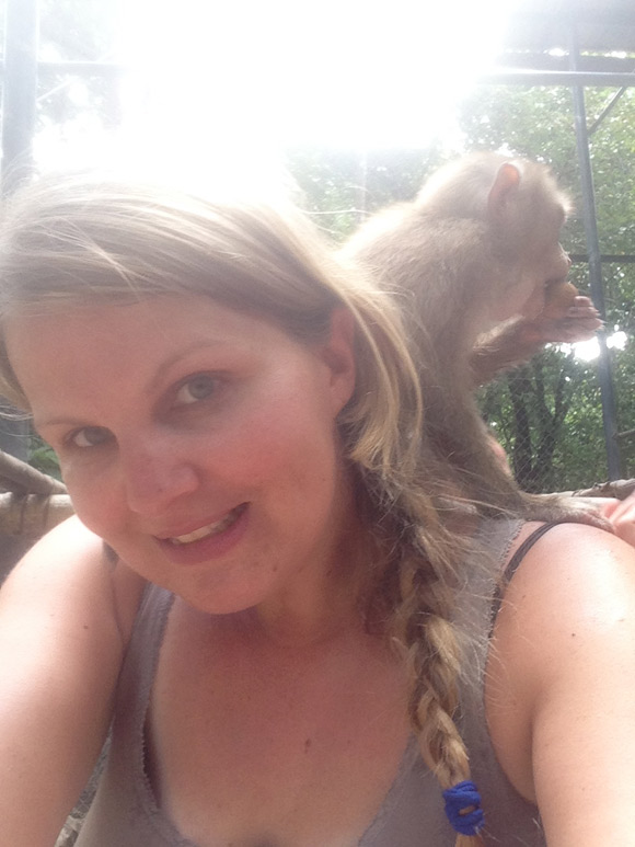 monkey-caro