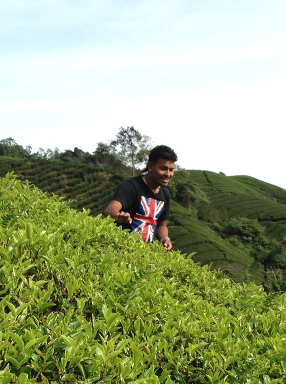 Cameron Highlands - 04