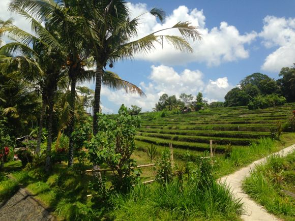 Bali, het Godeneiland. Deel 1