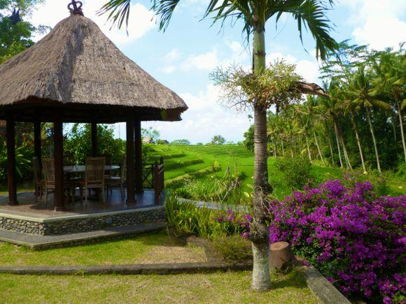 Hotels Bali - 06