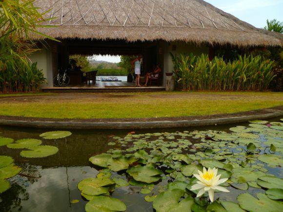 Hotels Bali - 12