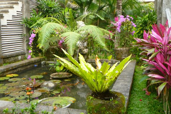 Hotels Bali - 16