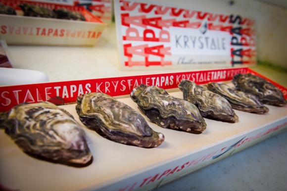 carrefour-oesters-15