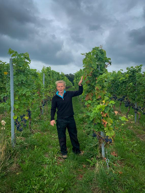 Cuvée Maastricht, op wijntour door Nederlands Limburg